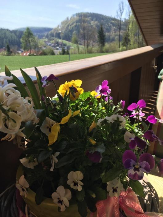 Frau Prof. Hanel genießt zwischendurch mal öfter den Frühling.